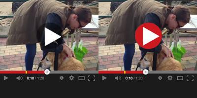 Easy-Tie Action Video